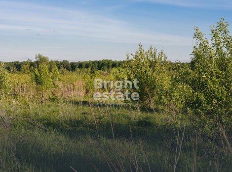 Продажа полевого участка в КП Папушево. ID 10523
