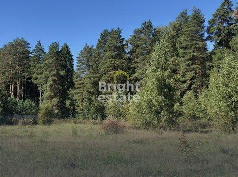 Продажа большого лесного участка в КП Резиденции Бенилюкс. ID 11898
