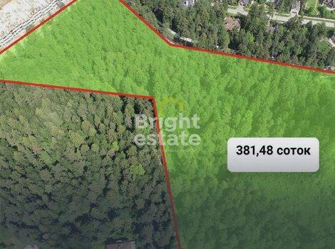 Купить большой лесной участок в КП Хвойный рядом с Грибово. ID 12096