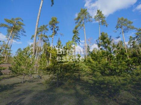 Купить земельный лесной участок в коттеджном поселке Грибово. ID 3293