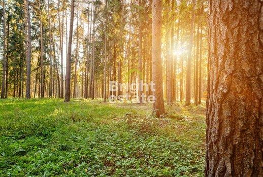 фото КП Павловские Сосны, Новорижское шоссе,  км от МКАД